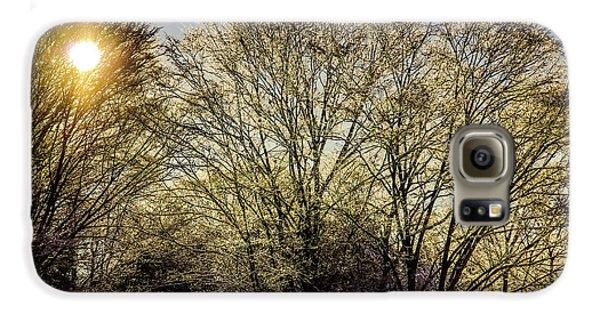 Golden Snow Galaxy S6 Case by Tatsuya Atarashi