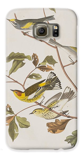 Golden Winged Warbler Or Cape May Warbler Galaxy S6 Case by John James Audubon