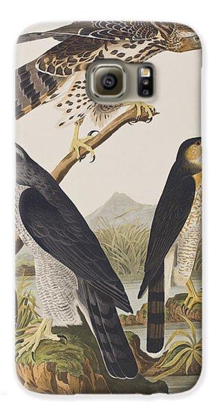 Goshawk And Stanley Hawk Galaxy S6 Case by John James Audubon
