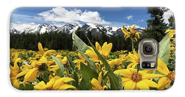 Grand Teton Mountains Galaxy S6 Case