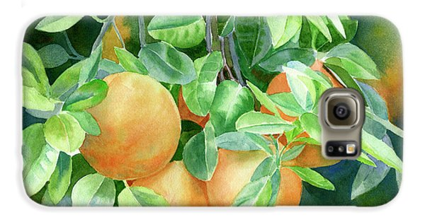 Grapefruit With Background Galaxy S6 Case