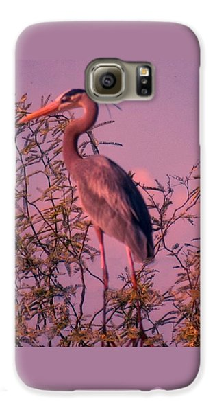 Great Blue Heron - Artistic 6 Galaxy S6 Case