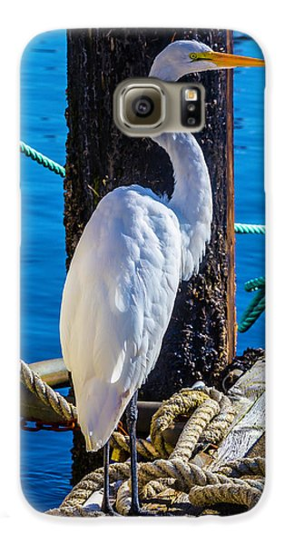 Great White Heron Galaxy S6 Case by Garry Gay