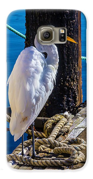 Great White Heron On Boat Dock Galaxy S6 Case