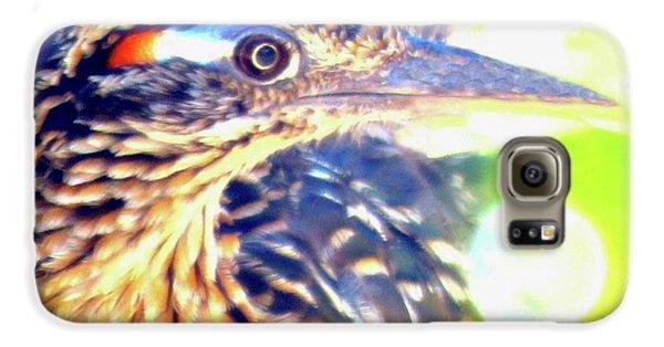 Greater Roadrunner Portrait 2 Galaxy S6 Case