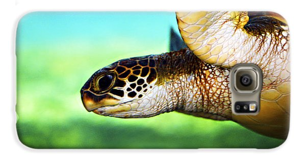 Reptiles Galaxy S6 Case - Green Sea Turtle by Marilyn Hunt