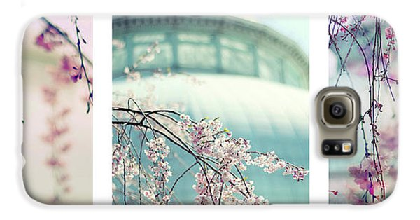 Galaxy S6 Case featuring the photograph Greenhouse Blossoms Triptych by Jessica Jenney