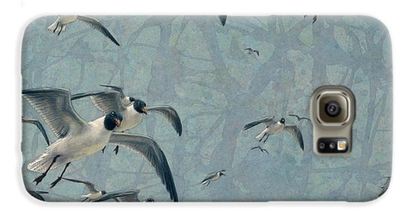 Seagull Galaxy S6 Case - Gulls by James W Johnson