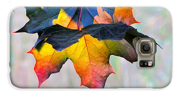 Harbinger Of Autumn Galaxy Case by Sean Griffin
