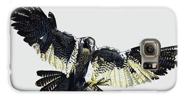 Hawk Galaxy S6 Case
