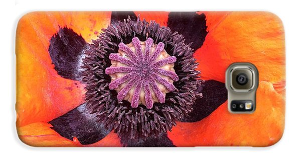 Galaxy S6 Case - Heart Of A Poppy by Orphelia Aristal