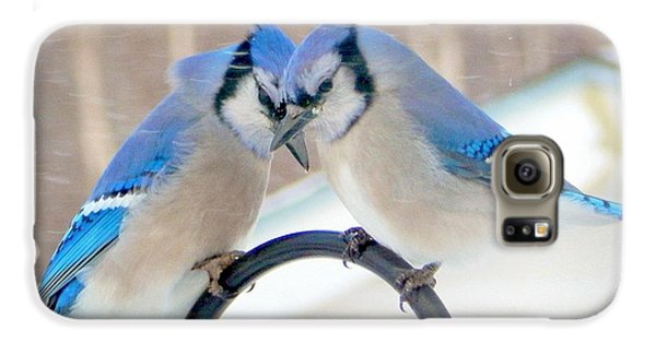 Bluejay Galaxy S6 Case - Heart To Heart by Karen Cook