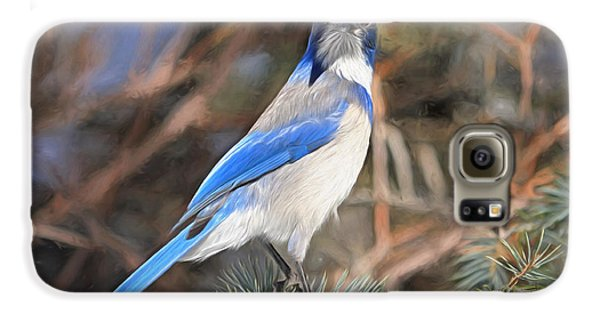 Bluejay Galaxy S6 Case - Here's Looking At You,  Kid by Donna Kennedy