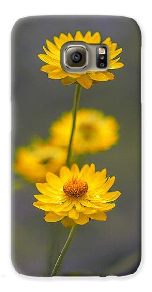 Stork Galaxy S6 Case - Hillflowers by Az Jackson