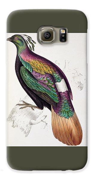 Himalayan Monal Pheasant Galaxy S6 Case by John Gould