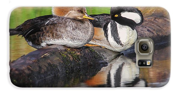 Hooded Merganser Pair Galaxy S6 Case