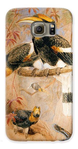 Hornbill Galaxy S6 Case - Hornbill  by Joseph Wolf