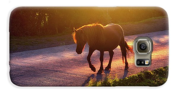 Horse Galaxy S6 Case - Horse Crossing The Road At Sunset by Mikel Martinez de Osaba