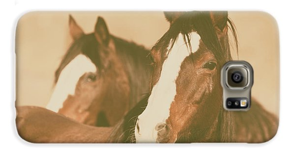 Galaxy S6 Case featuring the photograph Horse Portrait by Ana V Ramirez