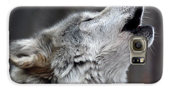 Wolves Galaxy S6 Case - Howl by Richard Bryce and Family