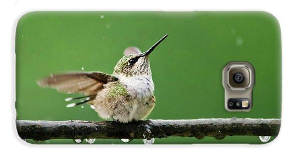 Hummingbird In The Rain Galaxy S6 Case