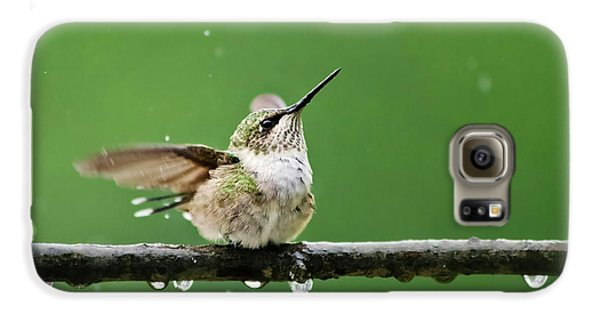 Hummingbird In The Rain Galaxy S6 Case