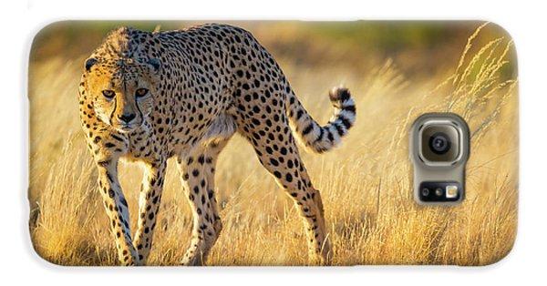Hunting Cheetah Galaxy S6 Case
