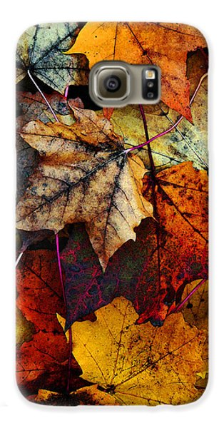 I Love Fall 2 Galaxy S6 Case by Joanne Coyle