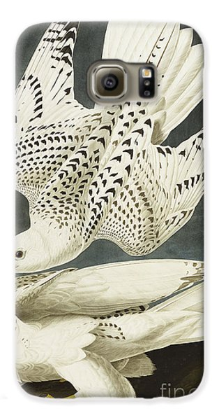 Iceland Or Jer Falcon Galaxy S6 Case by John James Audubon