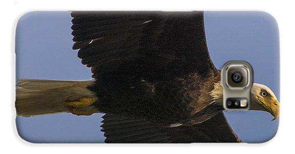 In Flight Galaxy S6 Case by Gary Lengyel