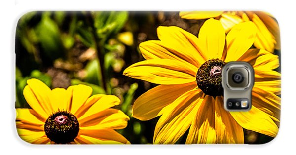 Indian Summer Gloriosa Daisy Galaxy S6 Case