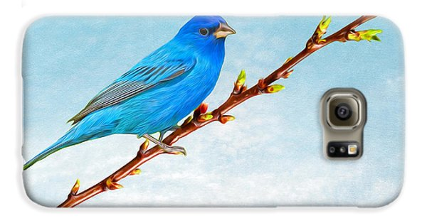 Bunting Galaxy S6 Case - Indigo Bunting by Laura D Young