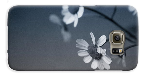 Daisy Galaxy S6 Case - Indigo Daisies 2- Art By Linda Woods by Linda Woods