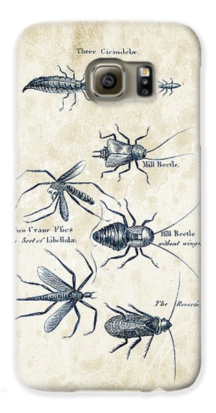 Insects - 1792 - 10 Galaxy S6 Case by Aged Pixel