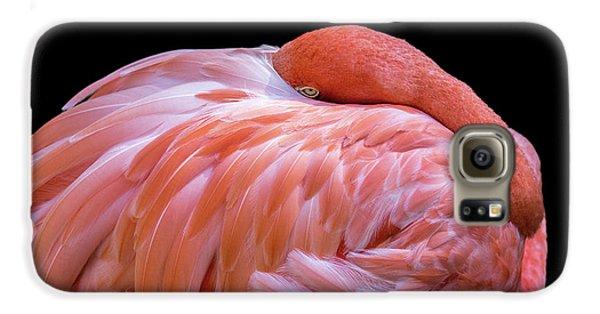 Introvert Galaxy S6 Case