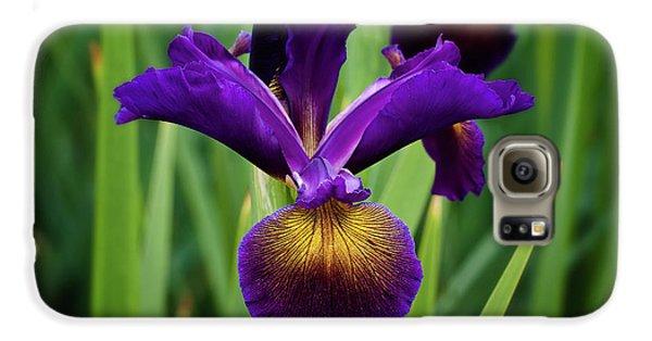Iris Galaxy S6 Case