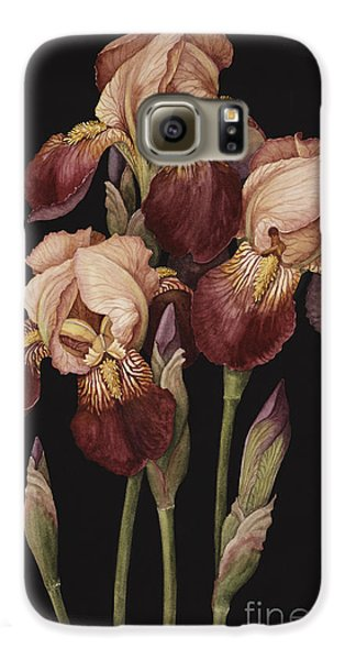 Irises Galaxy S6 Case by Jenny Barron