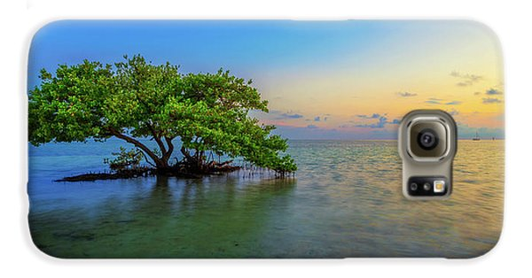 Mangrove Galaxy S6 Case - Isolation by Chad Dutson