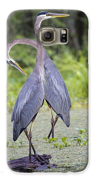 I've Got Your Back Galaxy S6 Case by Betsy Knapp