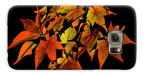 Japanese Maple Galaxy S6 Case