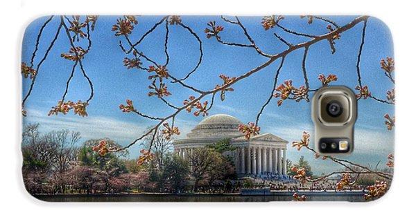 Jefferson Memorial Galaxy S6 Case - Jefferson Memorial - Cherry Blossoms by Marianna Mills