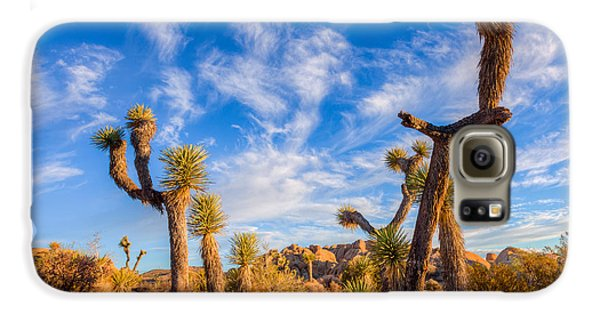 Galaxy S6 Case featuring the photograph Joshua Tree Dawn by Rikk Flohr