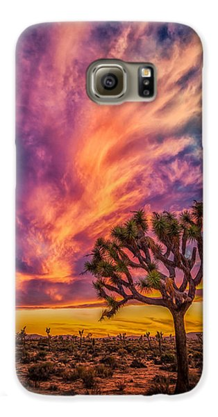 Joshua Tree In The Glowing Swirls Galaxy S6 Case