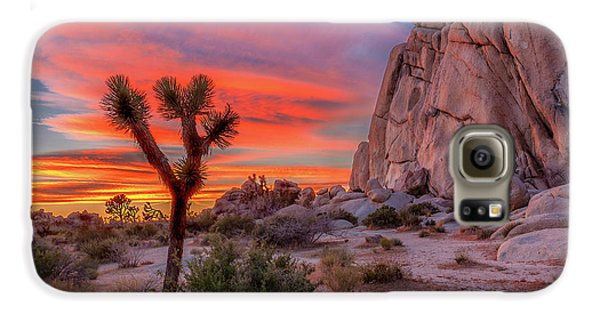 Landscapes Galaxy S6 Case - Joshua Tree Sunset by Peter Tellone