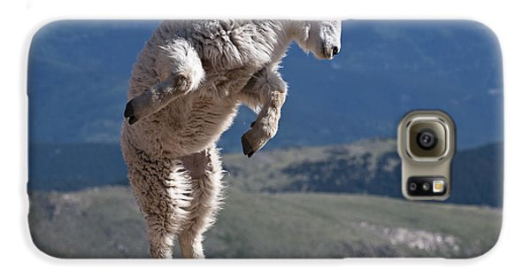 Galaxy S6 Case featuring the photograph Jump by Gary Lengyel