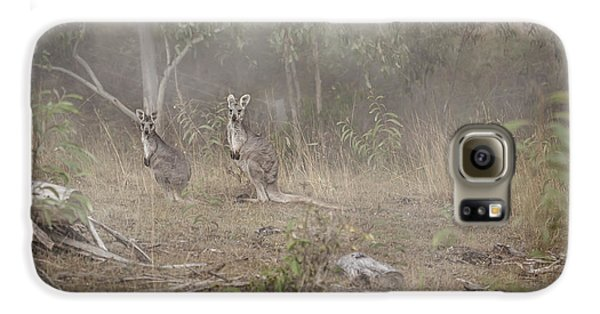 Kangaroos In The Mist Galaxy S6 Case