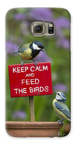Titmouse Galaxy S6 Case - Keep Calm And Feed The Birds by Tim Gainey