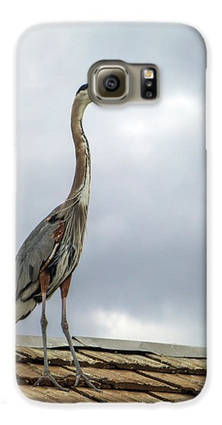 Keeping Watch Galaxy S6 Case