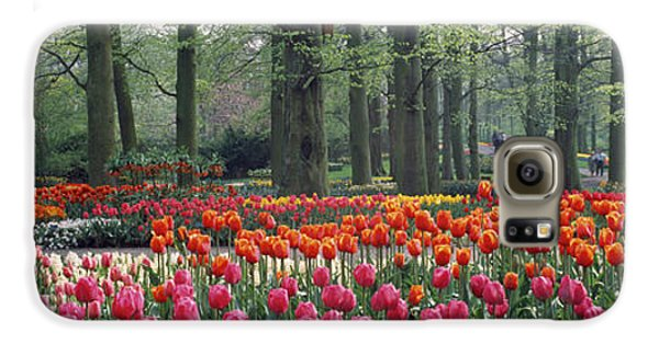 Keukenhof Garden, Lisse, The Netherlands Galaxy S6 Case