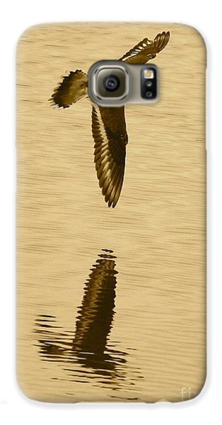 Killdeer Over The Pond Galaxy S6 Case by Carol Groenen